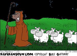 wolve-in-shepherdsclothing2