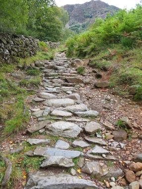 Vorsicht: Bauarbeiten! Der schmale Weg des Evangeliums wird endlich verbreitert